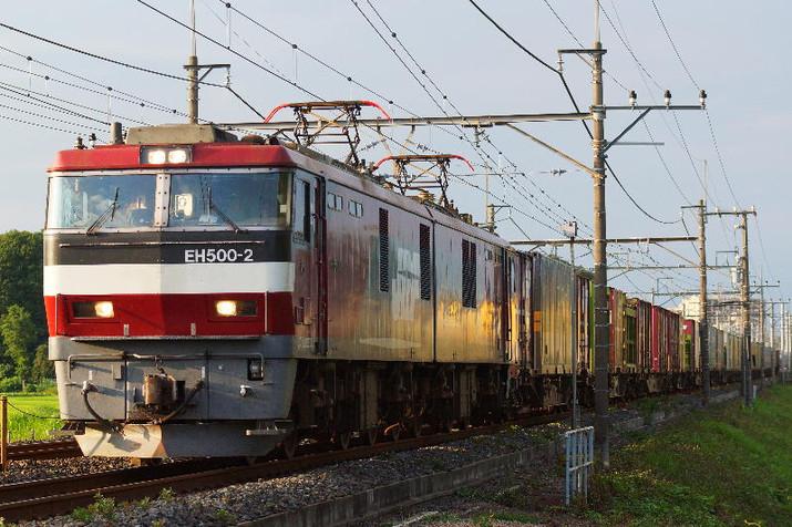 Dsc02239